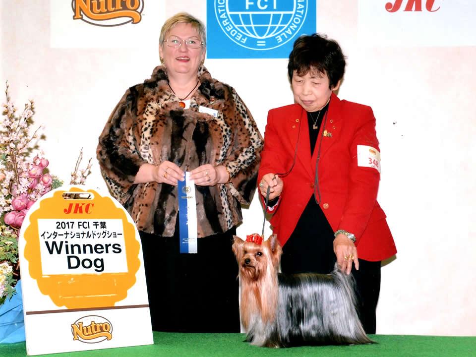 mydog_Orfe_awards02